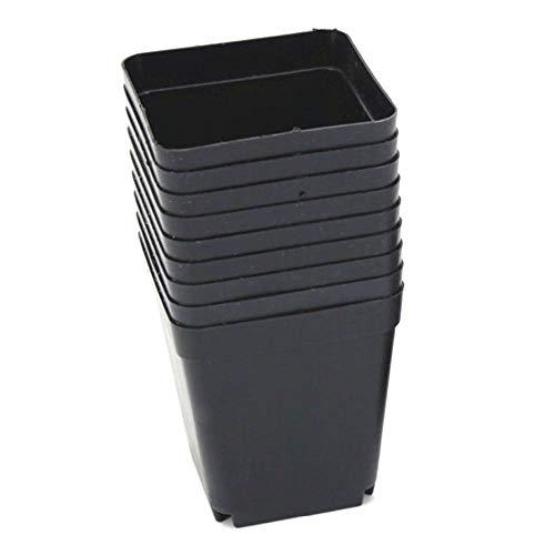 Heng 30st plastic zaailing lade kwekerij potten vierkante bloempotten voor het starten van zaailingen of vetplanten zwart