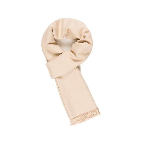 Scarf for Men Reversible Elegant Classic Cashmere Feel Scarves for Fall Winter (TA05-15)