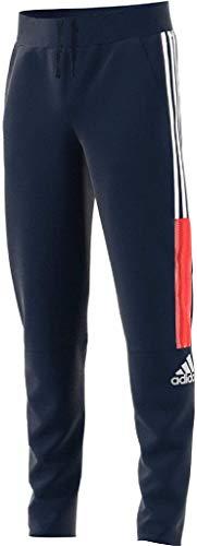 adidas JB A Zne Pant Pantalon Fille, Multicolore-Blanc (Maruni/Blanco), 164 (13/14 años)