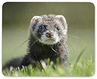 かわいいフェレットおしゃれスリップ防止マウスパッドおしゃれスリップ防止マウスパッドマウスマット-Polecat Weasel Mustela Kids Fun Computer Gift Mouse Pad -14219