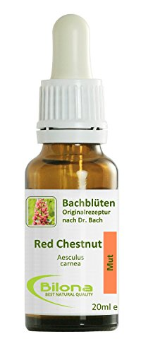 Joy Bachblüten, Essenz Nr. 25: Red Chestnut; 20ml Stockbottle