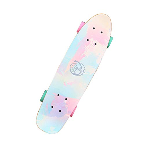 QAZ Complete Cruiser Skateboard, 24 Inch Portable Four-Wheel Street Skateboard for Beginners Adults Girls Boys, Load 150kg