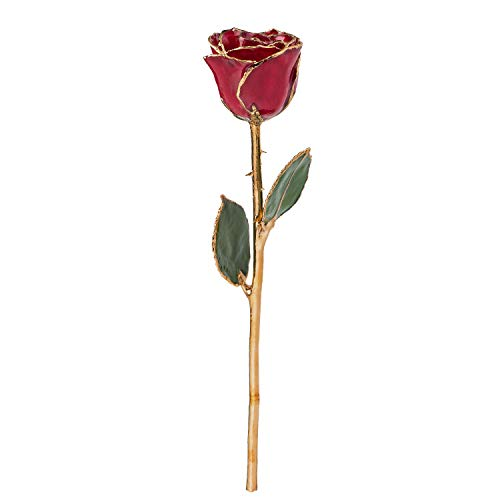 Forever Rose USA Brand, a Genuine, One of a Kind, Real Deep Red Rose, Hand Dipped in Lacquer and Trimmed in 24K Gold