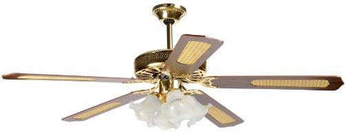 Howell HO.VSR14045 Ventilatore a Soffitto con Telecomando, Marrone