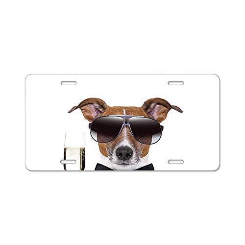 Dant454ty Kom op! Een Toast License Plate Frame Cover Metal Humor Grappige Front License Plaat Decoratieve Vanity Tag voor Vrouwen