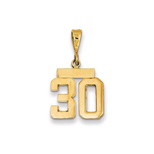 Saris and Things 14k Oro Amarillo Pulido pequeño número 30 Charm