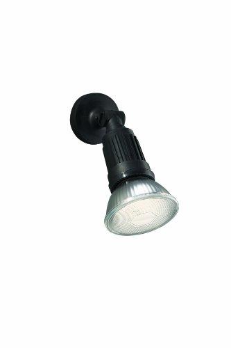 Massive 163843010 Jamaica Spot/Projecteur 1 x 23 W E27 230 V Noir