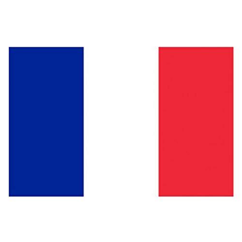 Les Trésors De Lily [J1616 - Drapeau 'France' Bleu Blanc Rouge - 90x150 cm