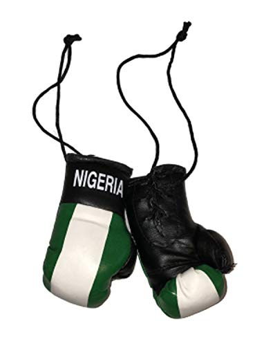 Gifts & Gadgets Co. Mini-Boxhandschuhe mit Nigeria-Flagge, ideal für jedes Auto, Lieferwagen, LKW oder Zuhause