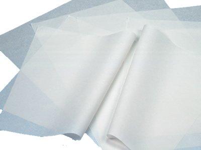 Papel 100% Seda PRAXTON Blanco, Resma x500 Hojas
