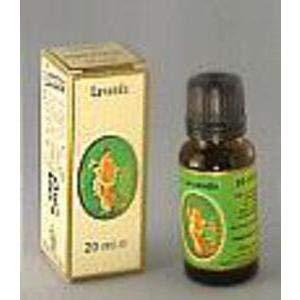 Flora etherische olie Lavendel Vera Bio Demeter - 100 ml