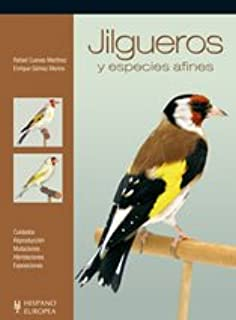 Jilgueros y especies afines (Pajaros / Birds