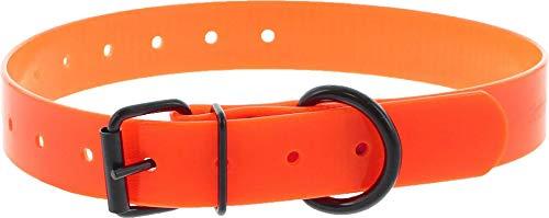 Collar Perro Naranja Poliuretano 45cm hebilla simple, 23Agujeros, gravable (ver las detalles)