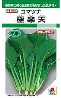 小松菜 種 【 極楽天 】 種子 小袋(約8ml)