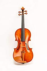 D Z Strad Are Promoting The Model 220 As A Violin Meant For Intermediate And Professional Violinists It Is Pre Tuned Set Up To Cater That