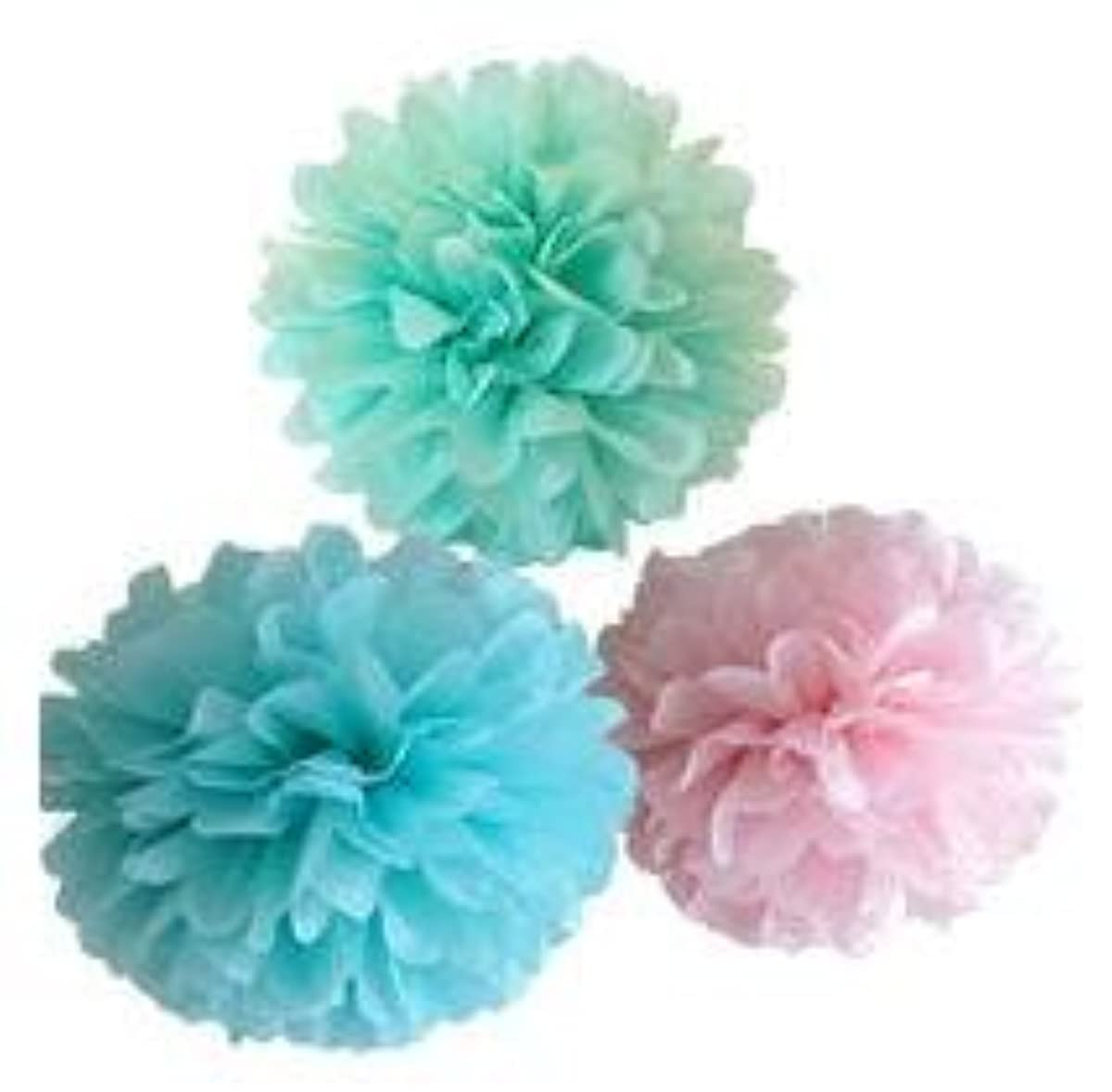 Since ? 12PCS Mixed Colors Tissue Pompoms Paper Flower Pom Poms Wedding Birthday Party Girls Room Decoration SIC-01731