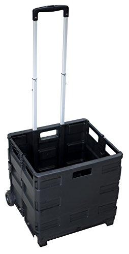 PAVO 8046126 Pantalla Plegable Carrito transportador hasta 35 kg, Negro
