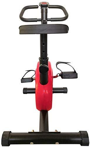 WGFGXQ Cyclette per Bambini, Bici da Allenamento Portatile per Interni con Display Digitale...