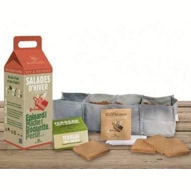 Graines de salades à Faire Pousser en kit