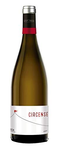 Circense Verdejo Vino Blanco D.O Rueda, Botella de 750 ml, Bodega Cuatro Rayas