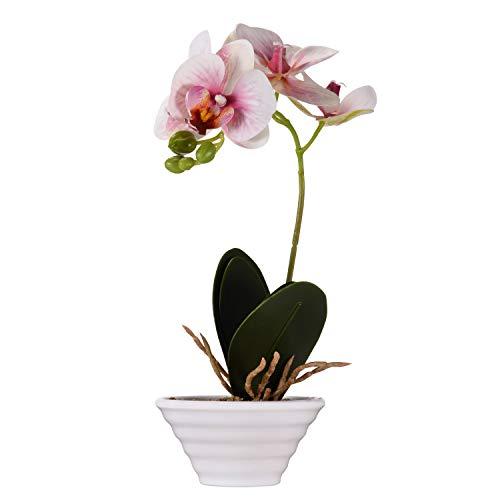 Asvert Flores Artificiales Plásticos Flor de Phalaenopsis realistas Orquídea Mariposa con Maceta Imitación Cerámica Decoración Cálida para Hogar Dormitorio y Oficina