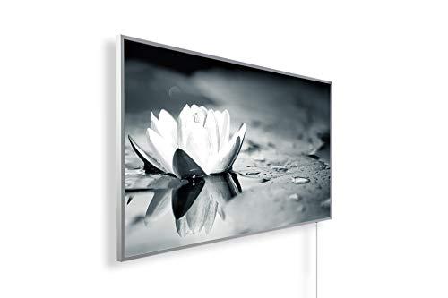 Könighaus Fern Infrarotheizung – Bildheizung in HD Qualität mit TÜV/GS - 200+ Bilder -1000Watt - Patentiert -Weißer_Rahmen(120. Seerose) Black Edition