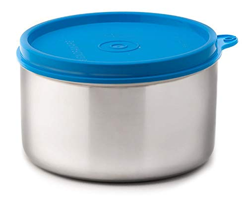 Signoraware Executive Big Stainless Steel Container, 500ml/20mm, Blue