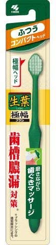 Max 63% OFF Fresh leaf extra width brush pcs 10 x Normal Compact Max 64% OFF