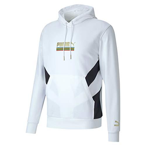 PUMA The Unity Collection TFS Herren Hoodie Puma White XXL