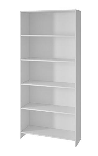 BRV BL 01A-06 Librero con 5 Niveles