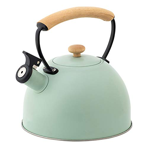 Stove Top Whistling Kettle, 2.5L Stainless Steel Tea Pot with Insulated Handle, Black/Light Green Water Jug for Gas Cooker Induction Cooker (Light Green)