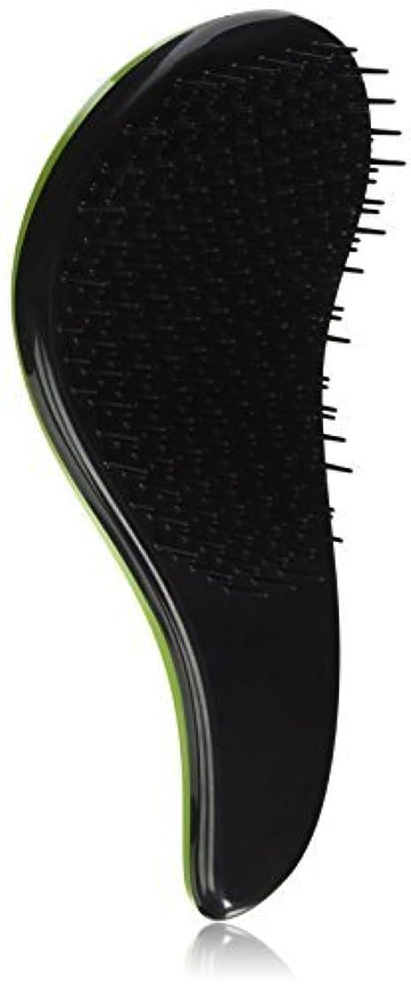 建てるブロンズ寄託CQ Wellness Multifunctional Painless Detangling Brush for Wet or Dry Hair, Green [並行輸入品]
