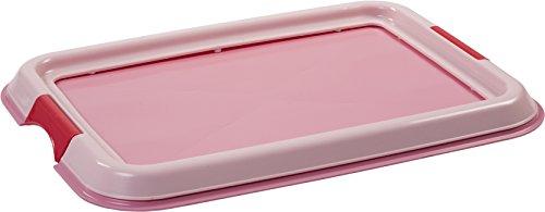 Iris Ohyama, entrenamiento del perro / bandeja de la educación a la limpieza - Pet Tray - FT-495, plástico, rosa, 49 x 36,5 x 3,2 cm