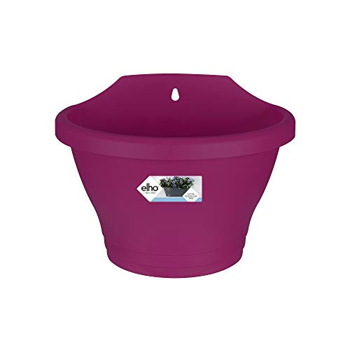 Elho Corsica Wall Basket 25 - Planter - Cherry - Outdoor & Balcony - L 25 x W 17 x H 19 cm