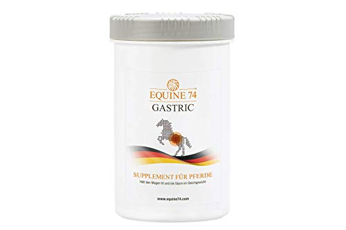 Equine 74 Gastric - Supplement für Pferde, Ponys mit Magenschleimhautreizung, Kolik oder Magengeschwür, puffert Magensäure (Pellets, 2kg)