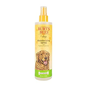 Burt s Bees for Dogs Natural Deodorizing Spray for Dogs   Best Dog Spray for Smelly Dogs   Made with Apple & Rosemary   Cruelty Free Sulfate & Paraben Free pH Balanced for Dogs - Made in USA 10 oz
