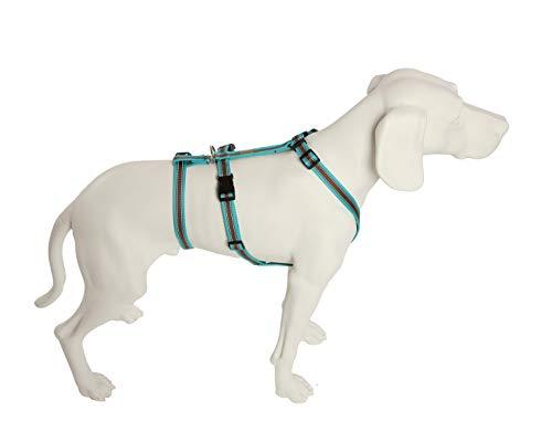 Feltmann No Exit ausbruchsicheres Hundegeschirr für Angsthund, Sicherheitsgeschirr für Pflegehunde, Panikgeschirr, Soft Grip, türkis/braun, Bauchumfang 40-60 cm, 15 mm Bandbreite
