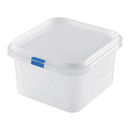 Great Plastic Contendedor de Alimentos/Fiambrera Cuadrado con Capacidad de 1,9 litros, Blanco, 17.6 x 16.2 x 10 cm