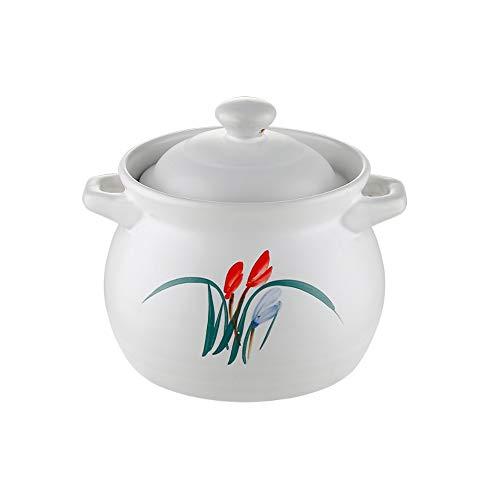 ZLDGYG Cacerola Blanca, Resistente a Altas temperaturas de la Llama Abierta cazuela de cerámica del hogar Sopa de Olla