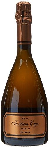 Bodegas Hispanosuizas Cava Vintage Tantum Ergo Chardonnay & Pinot Noir Brut Nature - 750 ml
