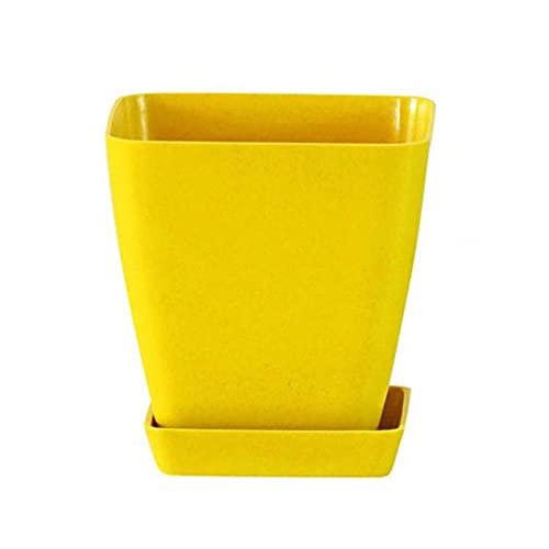 yywl Maceteros 1 UNID, 10 Color PLÁSTICO PLÁSTICO Pulso FLEXPOT 6.5 / 10CM Plantas suculentas Nursery Pots Inicio Oficina Decoración Bonsai Contenedor (Farbe : Yellow)