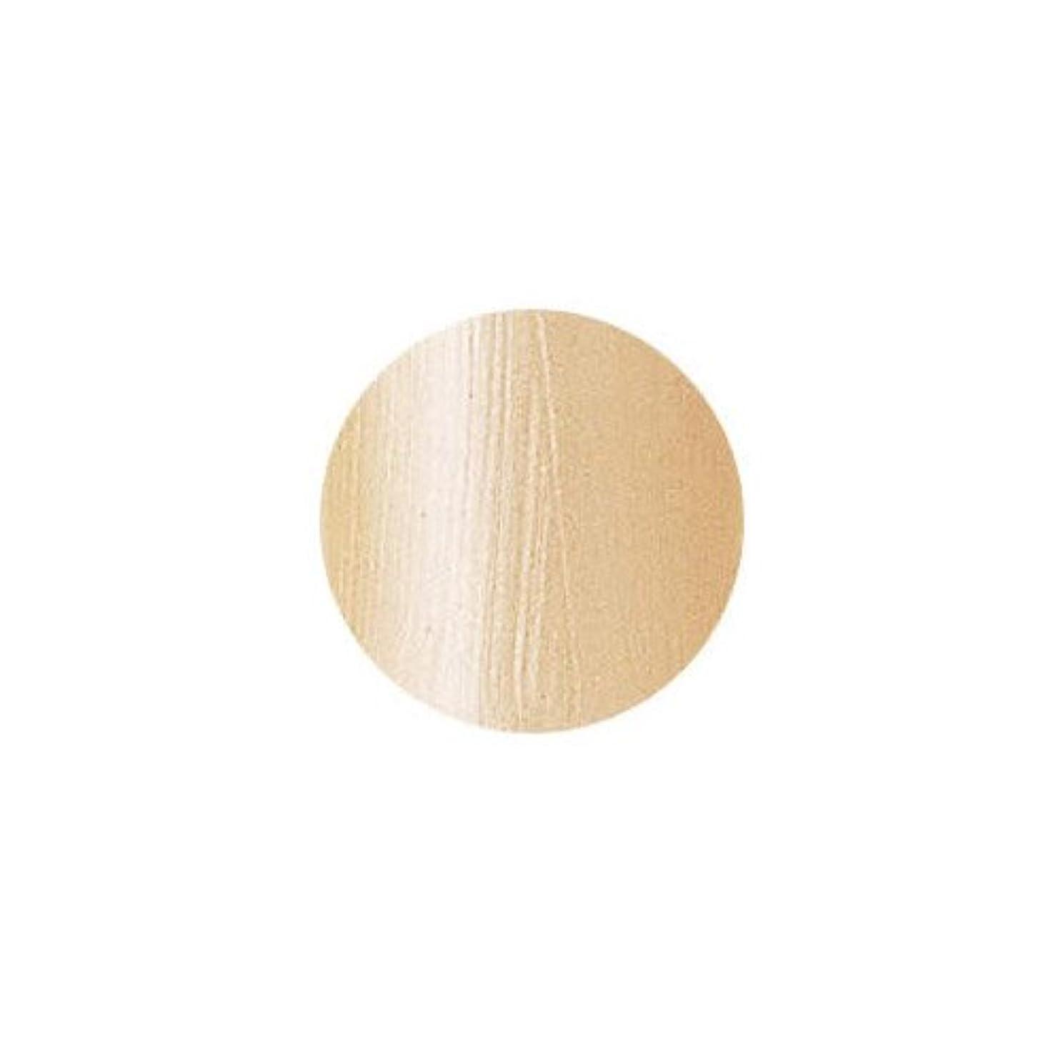 窓を洗う確執セミナーバイオスカルプチュア(バイオジェル) カラージェル 〔4g〕 (3) 83:カリビアンタン