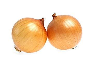 SANHOC Graines Paquet: oignon « Supra » - jaune paille, variété moyenne fin - seedsSEED