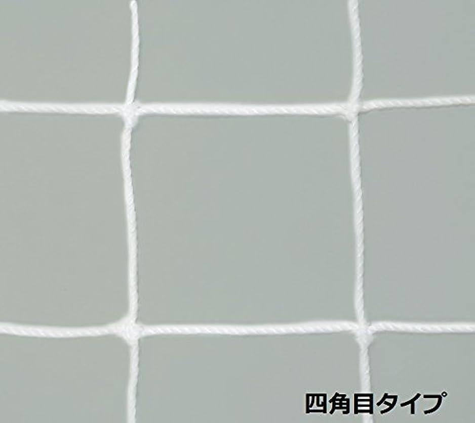 大使せせらぎ腐ったTOEI LIGHT(トーエイライト) フットサル?ハンドゴールネット 白 有結節 四角目 網目10cm角 2張1組 適合ゴールサイズ:幅310×上奥行90×下奥行130×高さ210cm B2562 B2562