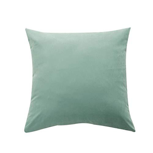 FeiliandaJJ Kissenbezug 60x60cm/50x50cm/40x40cm, Kissenhülle Kopfkissenbezug Einfarbig Mikrofaser Korallenvlies Super Weich Pillowcase für Sofa Bed Home Dekoration (50x50cm, A)