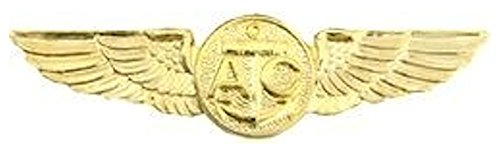 HMC Naval Air Crew Wings Small Pin,Gold,1 1/8'