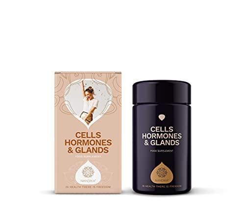 Nandika Natural, Herbal, Orgánico, Suplementos de cúrcuma, Guggul, Maca, Shatawari, Pastillas, Pastillas para células, hormonas y glándulas