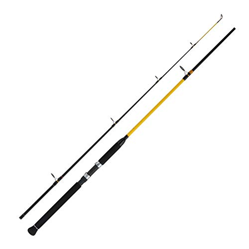 WFTNever Crack Big Fish 150-700g 2,10m