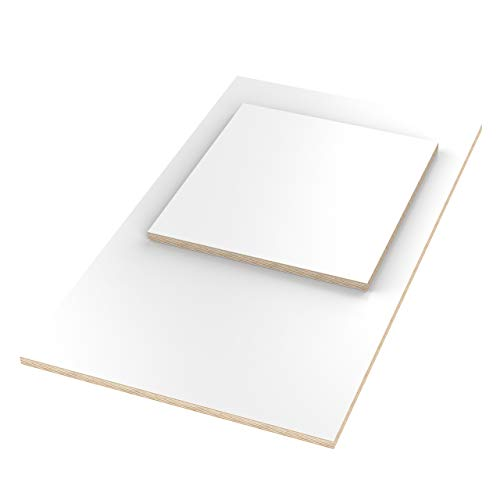 AUPROTEC Tischplatte 18mm weiß 1400 mm x 800 mm rechteckige Multiplexplatte melaminbeschichtet von 40cm-200cm auswählbar Birken-Sperrholzplatten Massiv Holz Industriequalität Auswahl: 140x80 cm