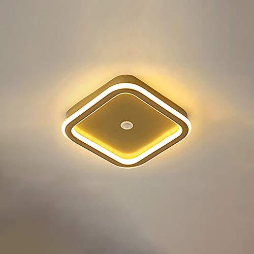 Lámpara De Techo LED, 16W Moderna Rectángulo Plafon De Techo con Sensor De Movimiento Blanco Frio 5500K Metal Iluminación De Interior para Escalera Balcón Dormitorio Loft L22*4CM,Oro